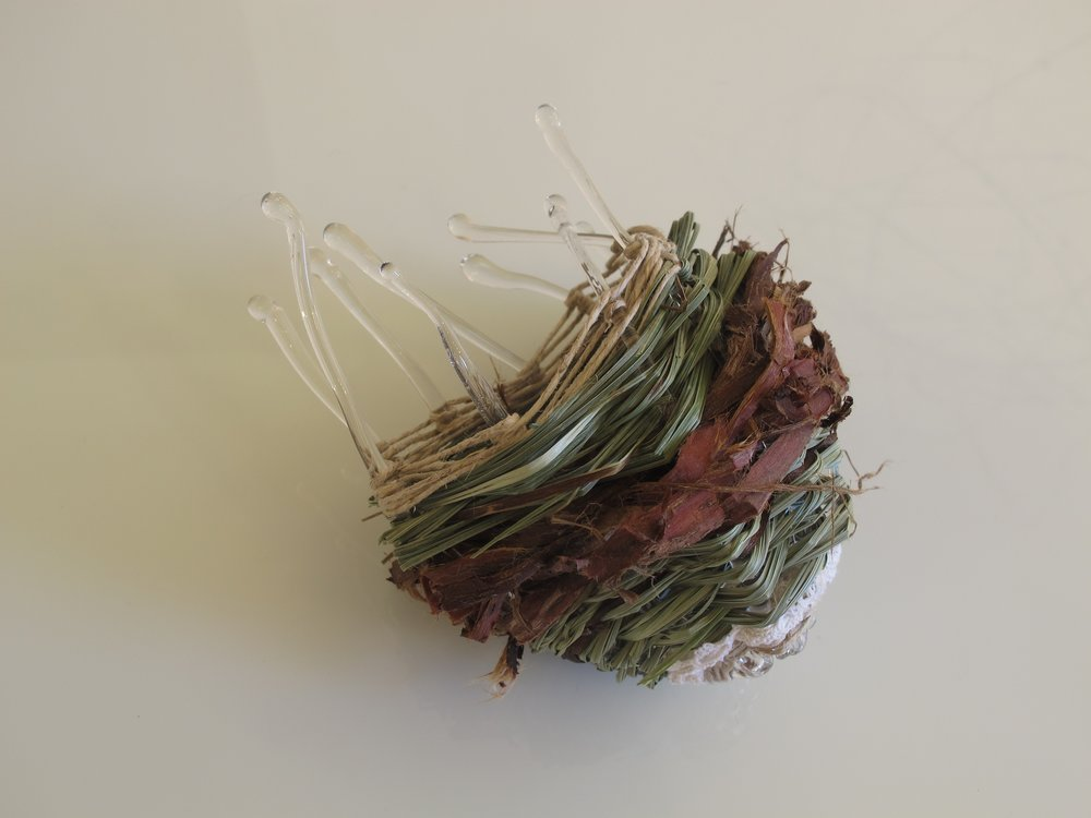 Gathered Memories 1 flame worked glass, grass, lace, cedar, copper 9 h x 13 l x 8 d cm 2016