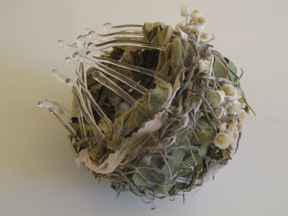 Gathered Memories 2 flame worked glass, grass, mullein, pearly everlasting, bull rush, wild clematis, cotton, copper 14 h x 16 l x 15 d cm 2016