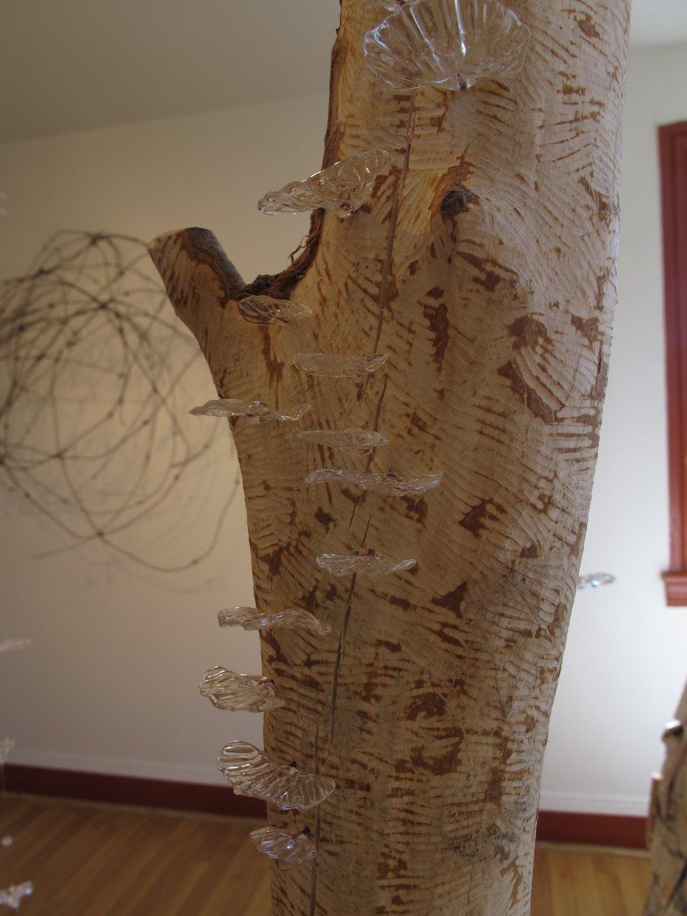 Healing Forest detail