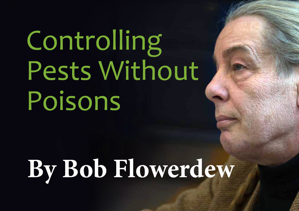 Bob Flowerdew - Link to talk on poison-free pest control