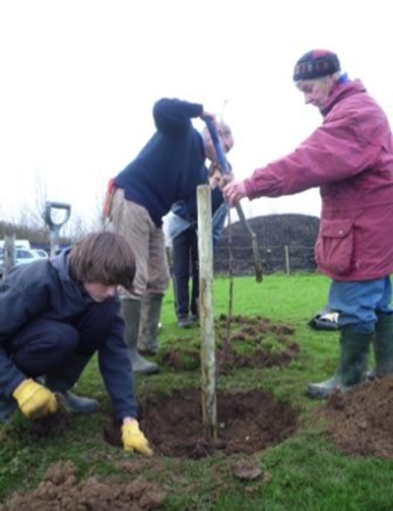 Planting a tree for web.jpg