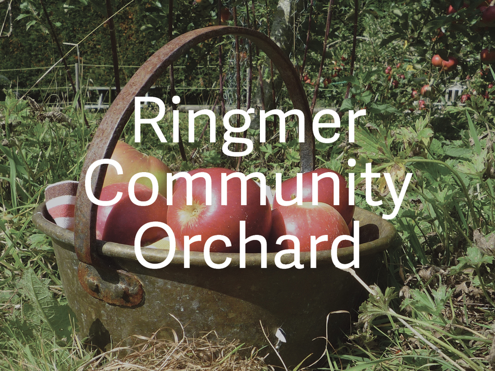 Ringmer Community Orchard Events Gateway.jpg