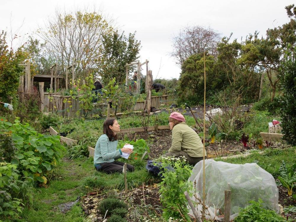 couple chatting at the allotment.jpg