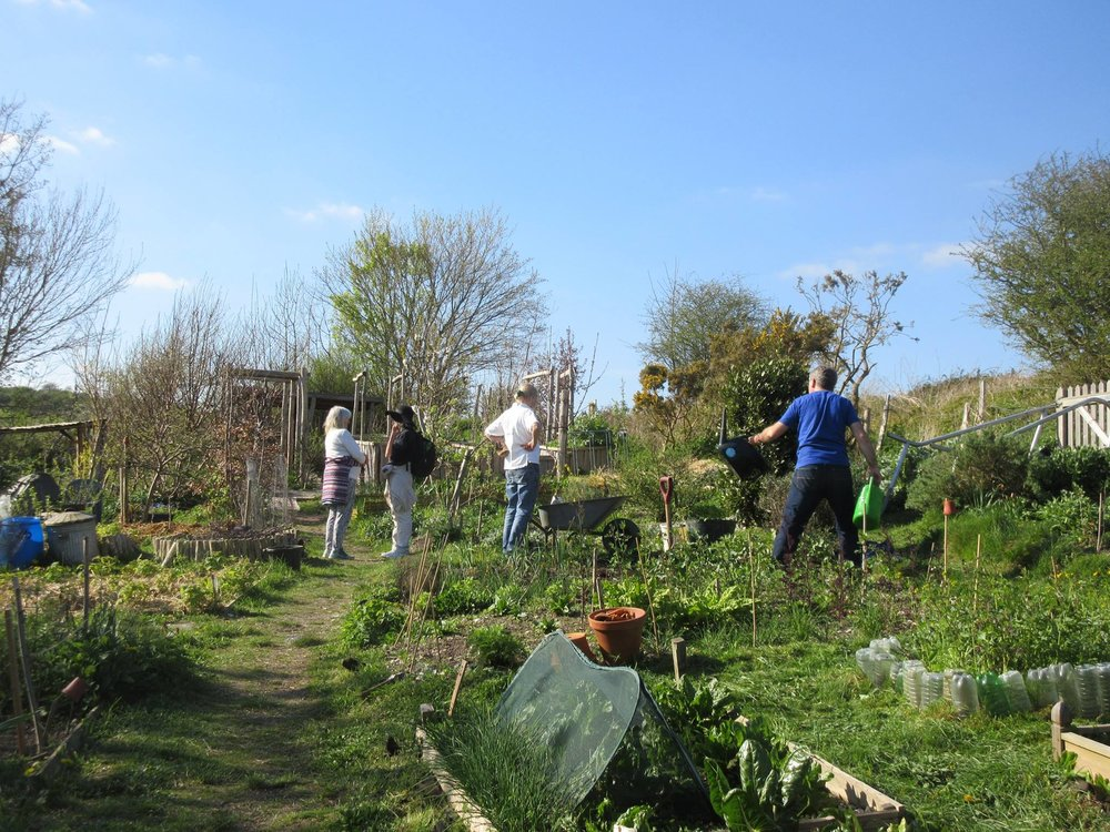 And here are some of our allotment members, working hard