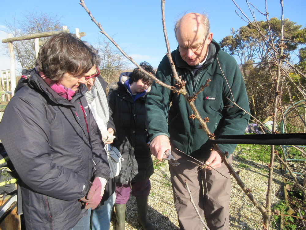 Peter May demonstrating pruning techniques at LCA