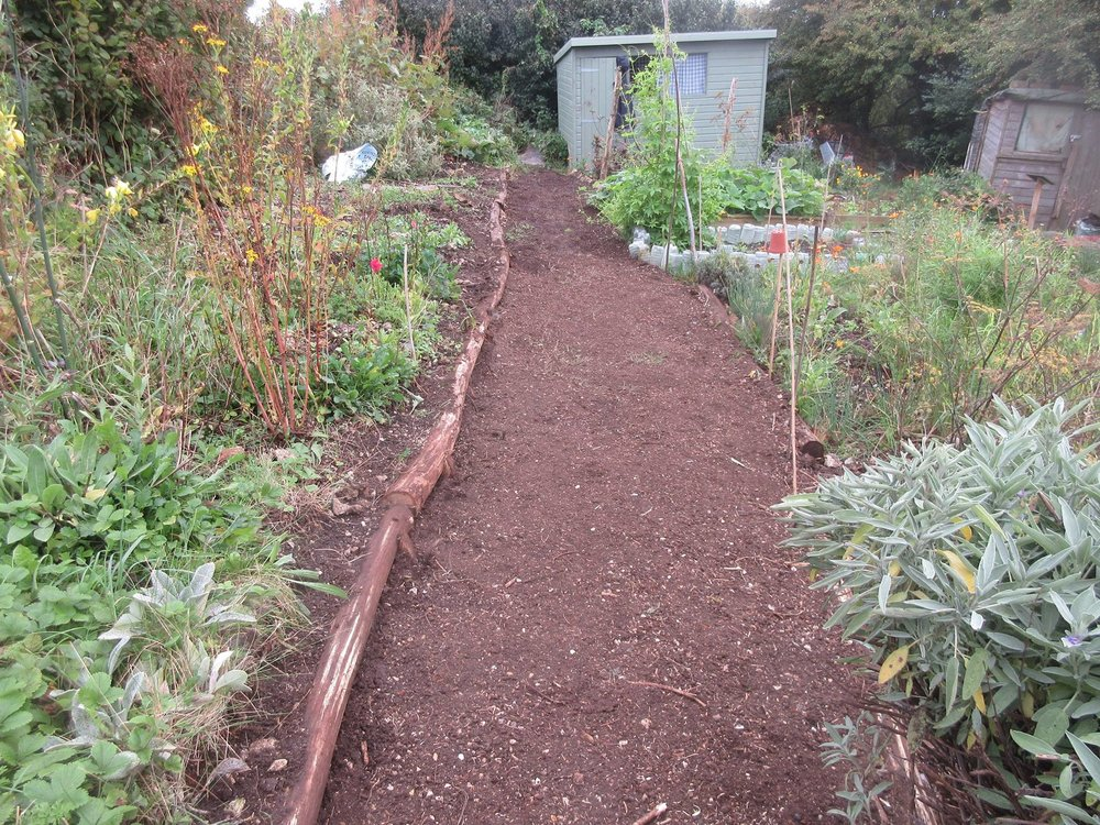 Vastly improved path at the Allotment