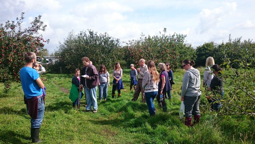 Orchard talk