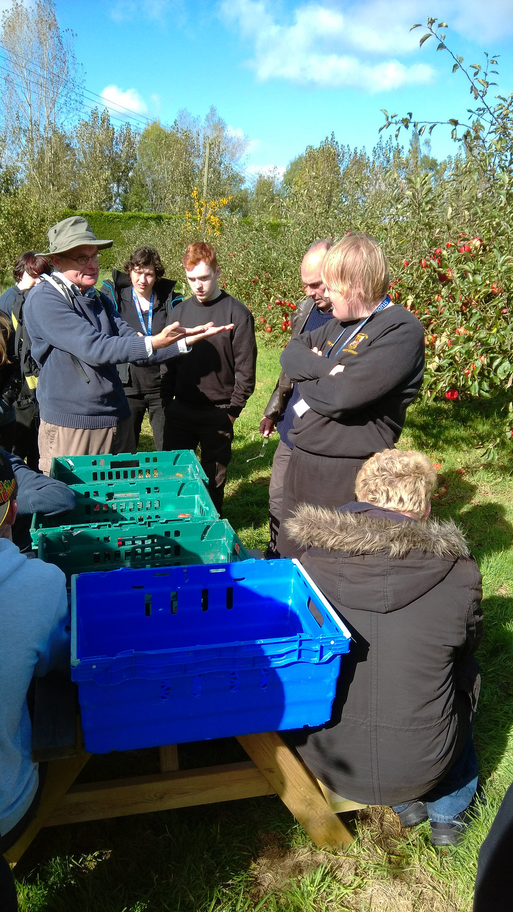 Explaining about grading apples