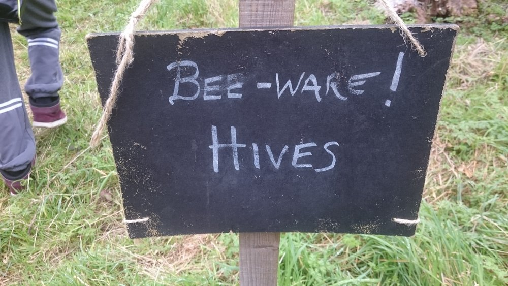 Bee warning!