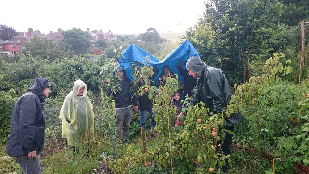 A wet Saturday pruning session with Peter May