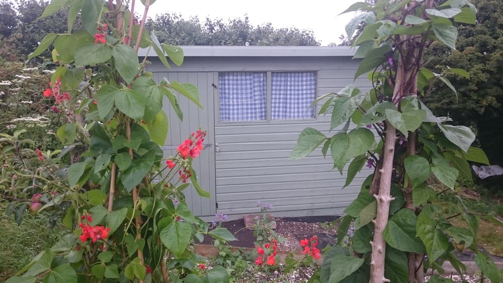 Lovely shed. Thanks Felicity Ann for the curtains