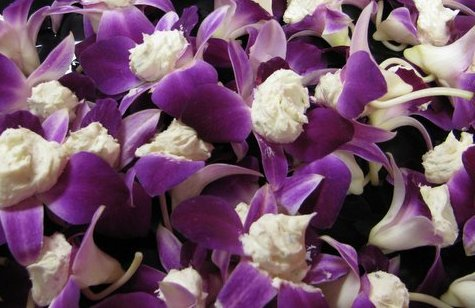 app Edible Orchids.JPG