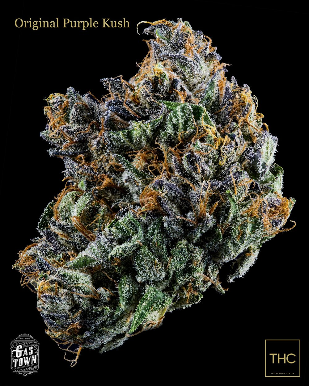 Original Purple Kush Gastown THC.jpg