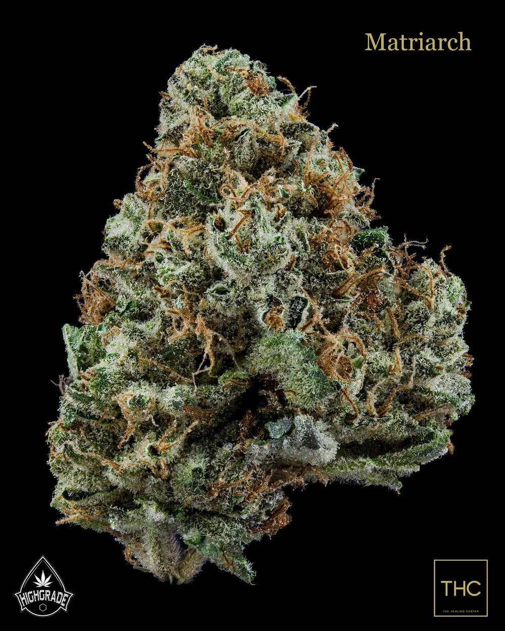 Matriarch Highgrade THC.jpg