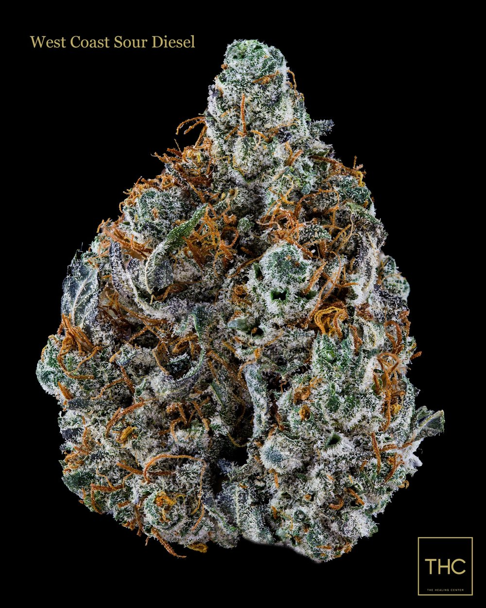 West Coast Sour Diesel THC.jpg