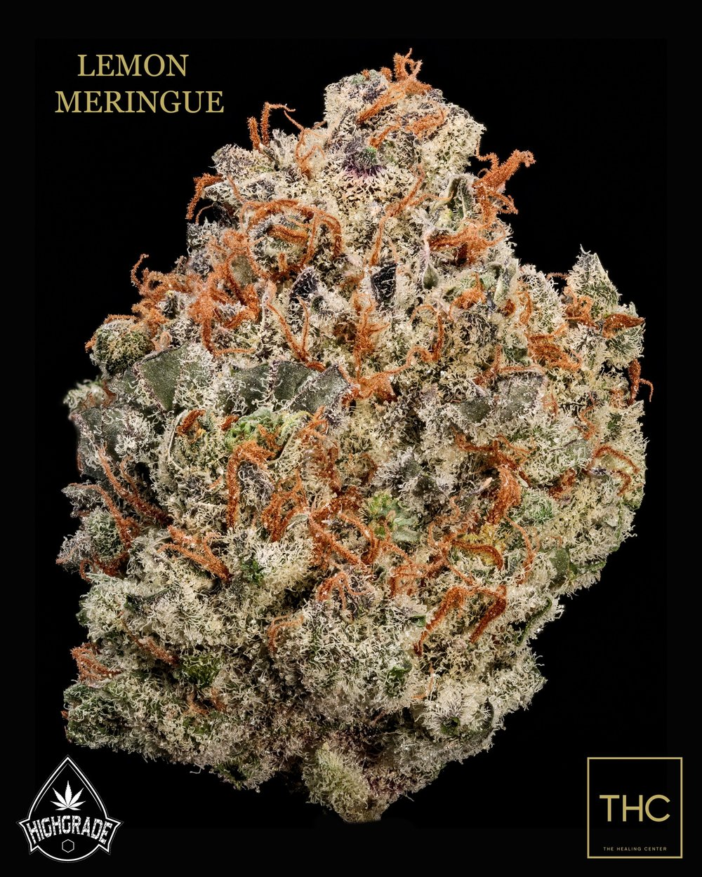 Lemon Meringue Highgrade 2018 THC.jpg