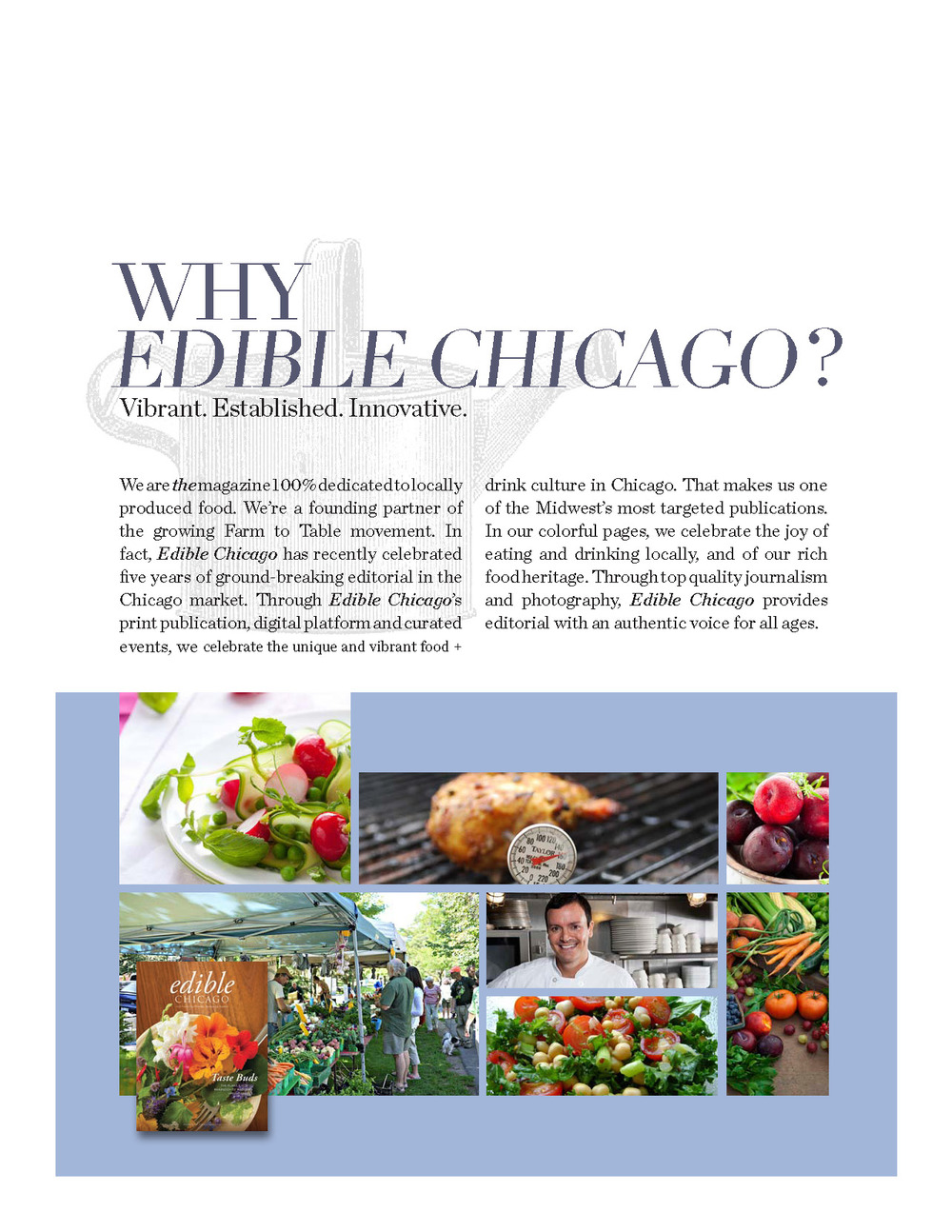 Edible Chicago 2014 Media Kit with Rate Card_Page_03.jpg