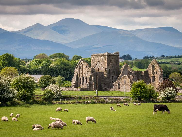 Ireland-countryside-landscape.jpg