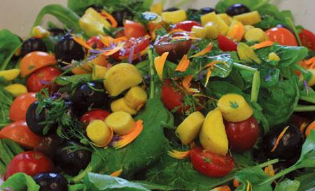 Staff enjoy opening their Growing Solutions Farm CSA box of fresh vegetables