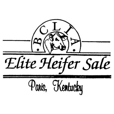 Elite Heifer Sale BCLIA