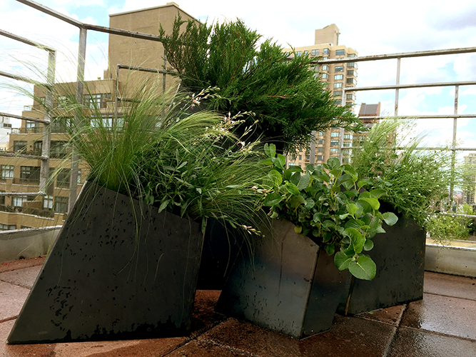 Huntergreen NYC rooftop garden planters