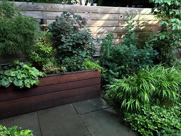 Huntergreen Brooklyn NYC garden