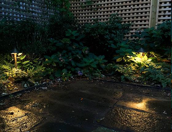 Brooklyn NYC backyard garden lighting