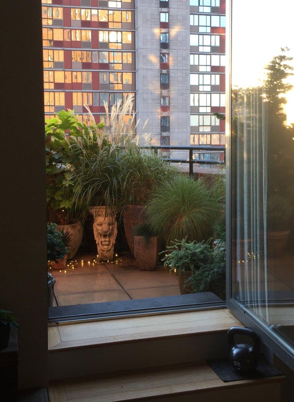 brooklyn architectural garden terrace
