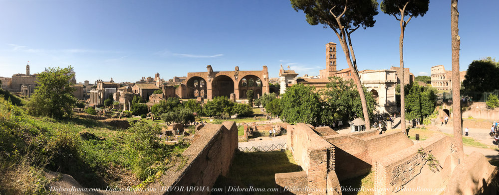 The Roman Forum as seen from the Palatine Hill