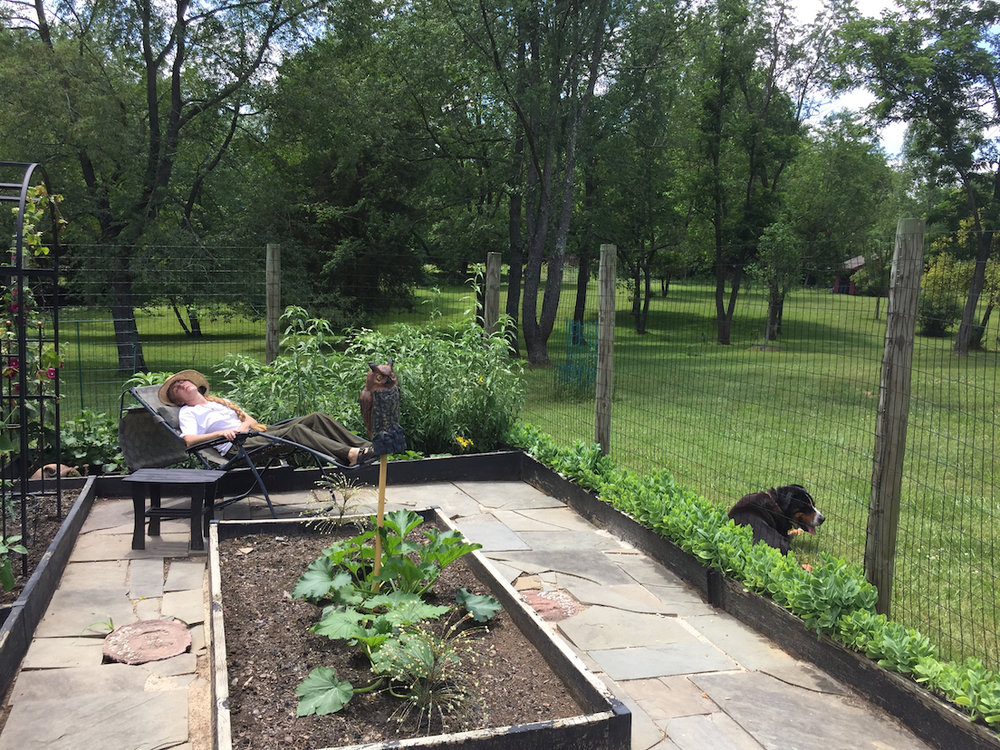 "Sigrid: President and CEO of ALODF.  She is based in Virginia.  ""My son took this photo. I tend to work until I drop. This photo reminds me that it's OK to take a nap now and then. And, you know what I notice most in this photo?: The one weed I missed."""