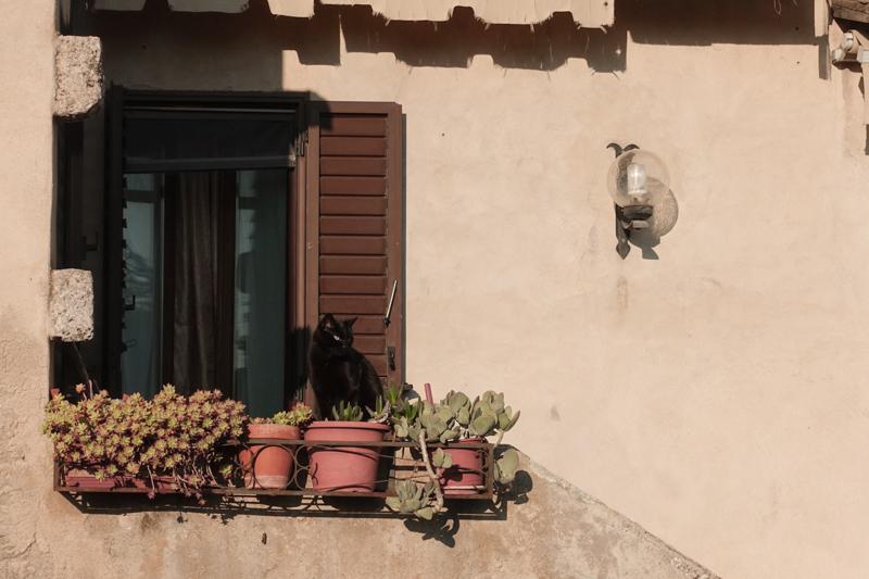 2.10.18. San Gimignano - day trip with school