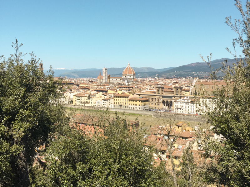 4.7.18. View from Piazza Michelangelo