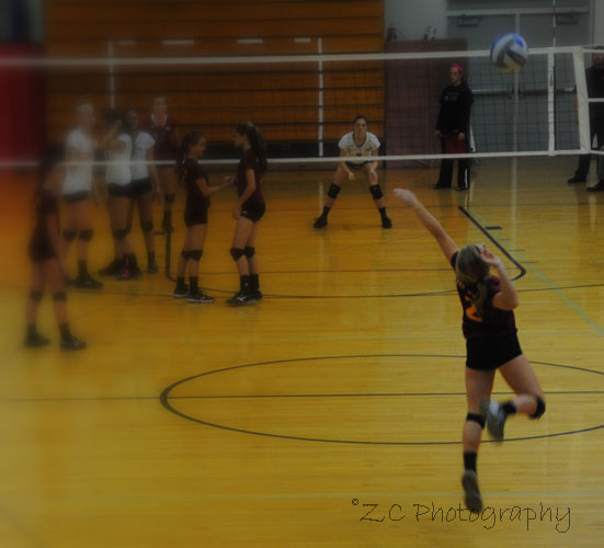SF_VB vs WI_Luth_10-8-15 (230).jpg