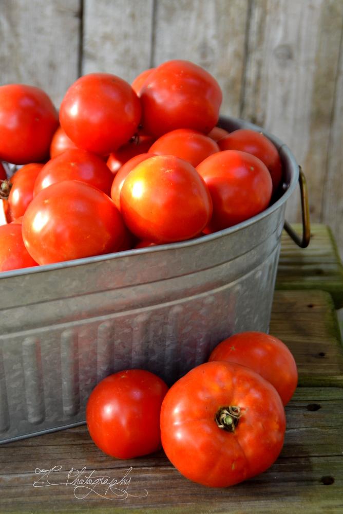 tomatoes (1) WM.JPG