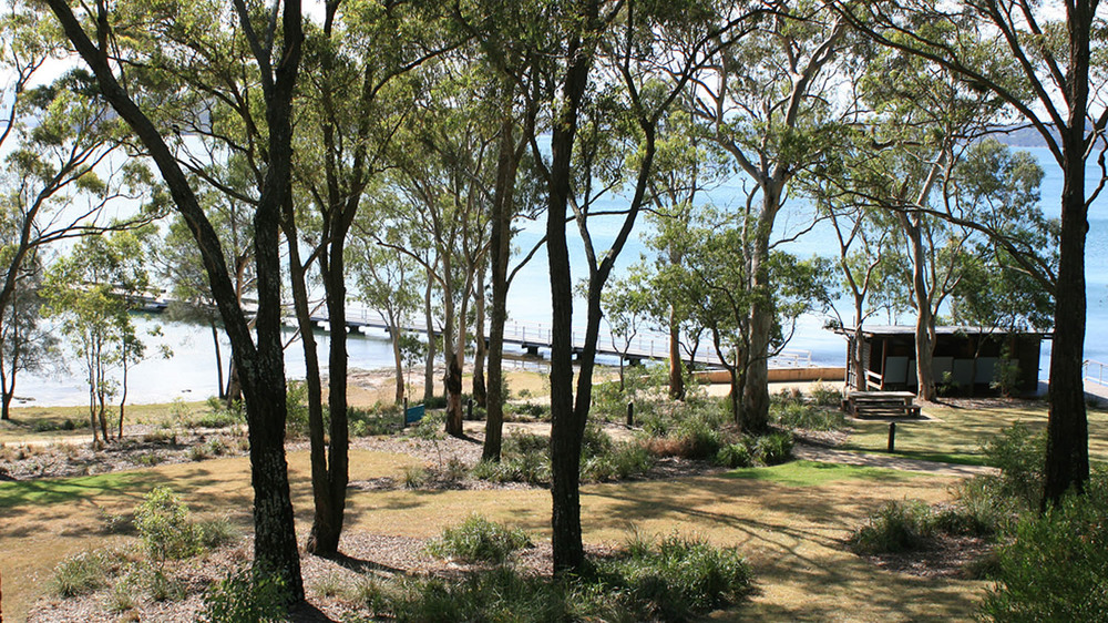 lake foreshore open space.jpg