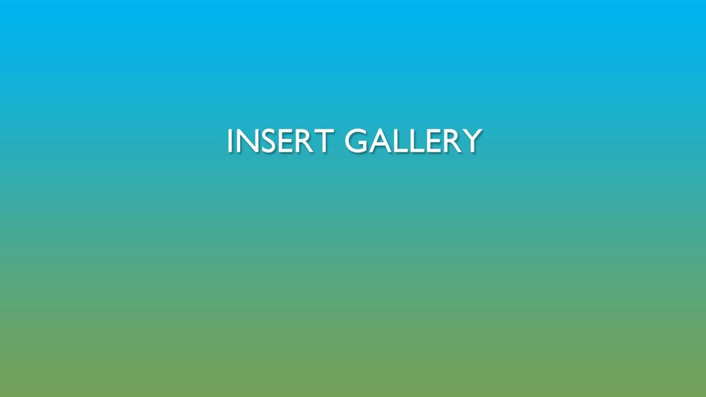 1_INSERT GALLERY.jpg