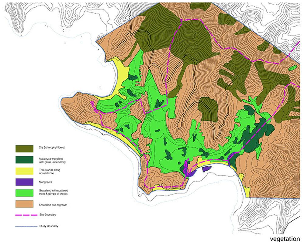 5-vegetation.jpg