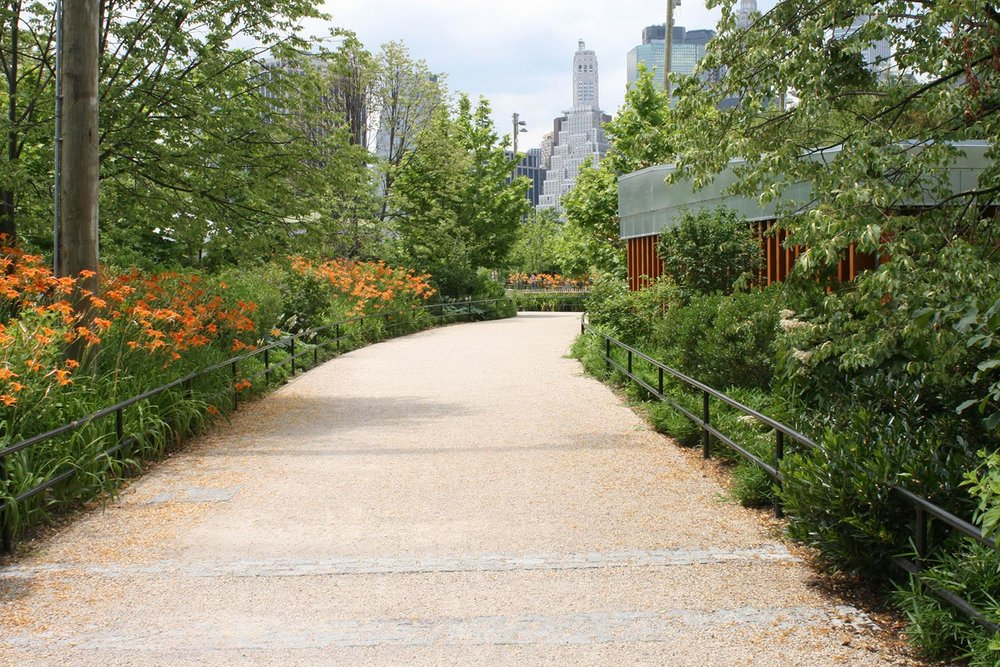 Ornamental planting adjoining path