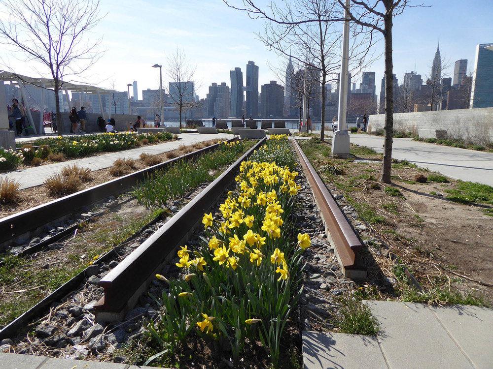 Planting between railway lines