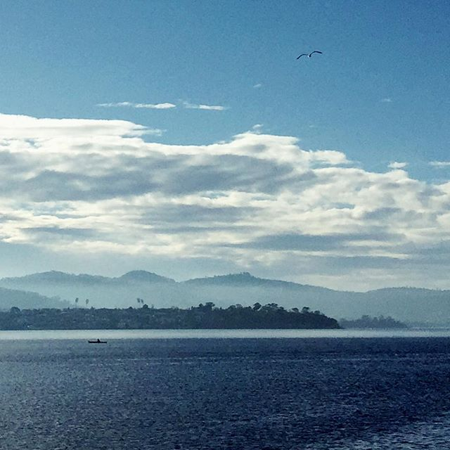 Bellerive Bluff.  Beautiful morning walking the dog. Spring is in the air #Hobart#tasmaniatrip#lazyweekend