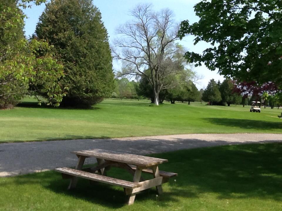 picnic_bench.jpg