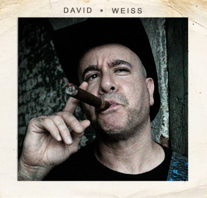 David Weiss  (Guitar, BG Vocals)