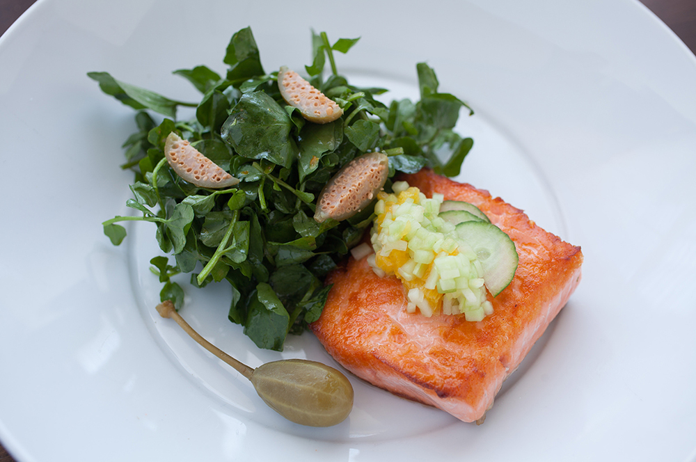 Seared Salmon Salad at the Tavern at CIA's American Bounty Restaurant