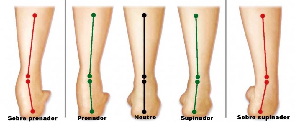 Pronación - Supinación