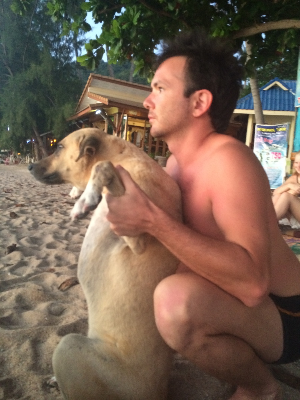 Adjusting the leader of a local dog gang on the beach of Koh Tao, Thailand.  Find out more about our Animal Chiropractic Services  HERE .