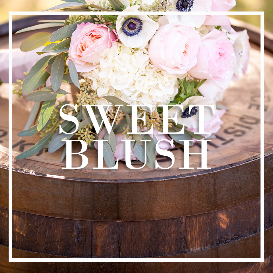 WCFD-Portfolio-COVER-SWEETBLUSH.jpg