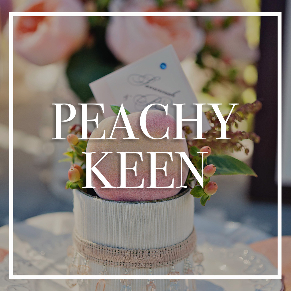 WCFD-Portfolio-COVER-peachykeen.jpg