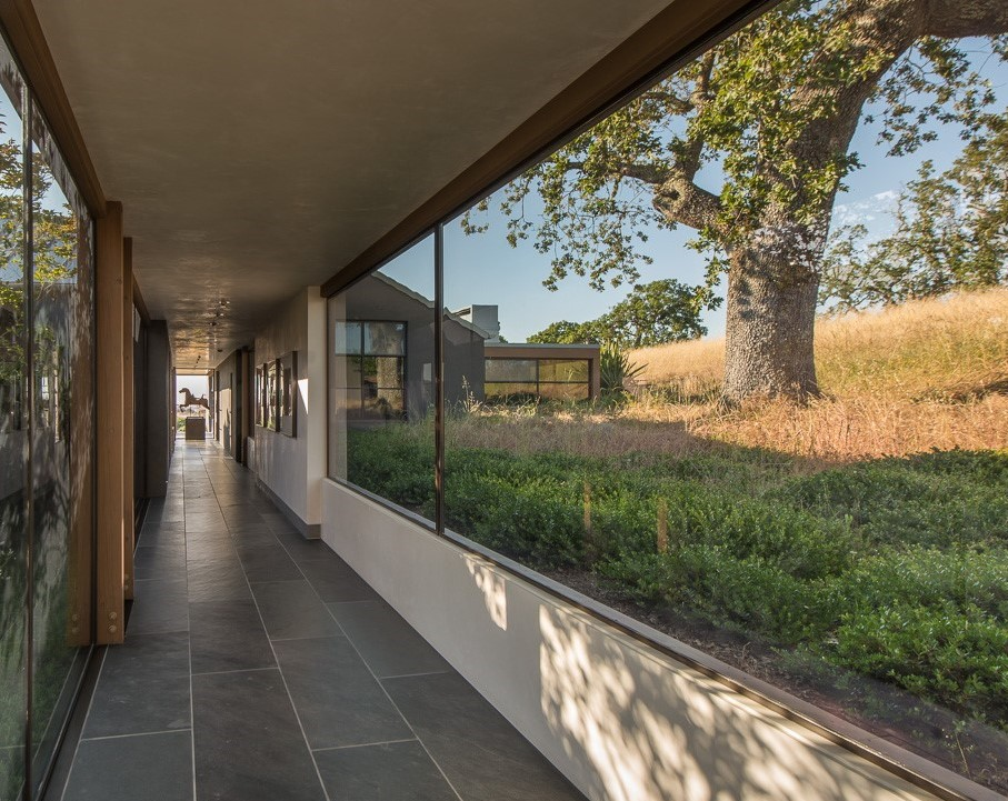 The existing oak tree on site informed parts of the layout.  It is viewed every day moving between the garage and entry into the living and bedroom areas, becoming an intimate part of the home.
