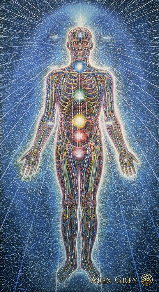 the chakras as seen by alex grey