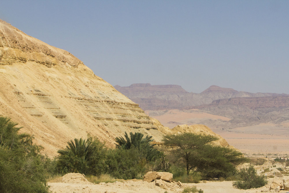 Eilat-may-2017-00062.jpg